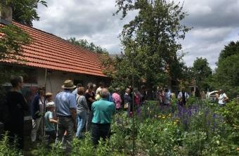 Bienen_und Hummelgarten
